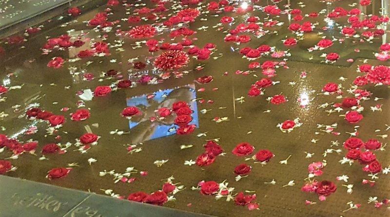 Blumen im Brunnen